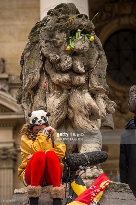 Lion Bourse Fleurs
